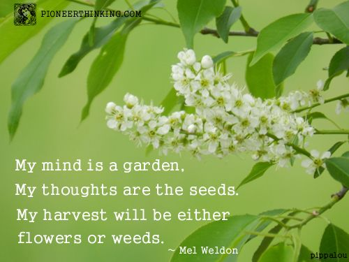 Mel Weldon Quotes