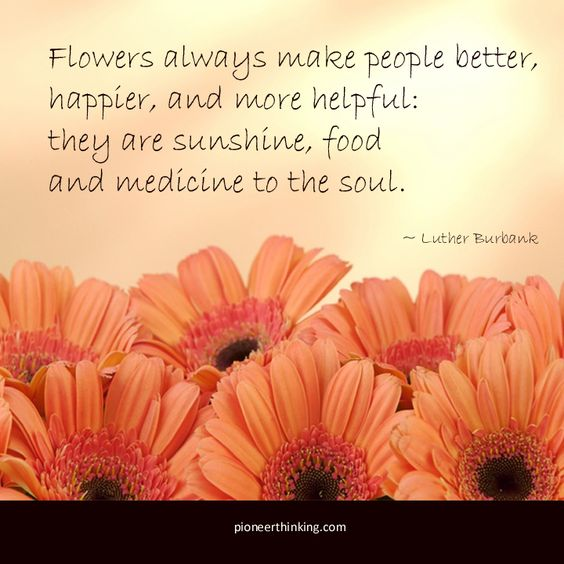 Flowers Always Make People Better - Luther Burbank
