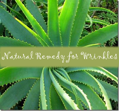 What is The Best Natural Remedy for Wrinkles?