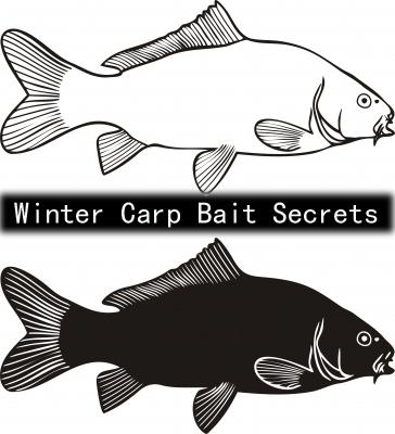 Winter Carp Bait Secrets