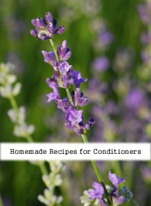 Homemade Recipes for Conditioners