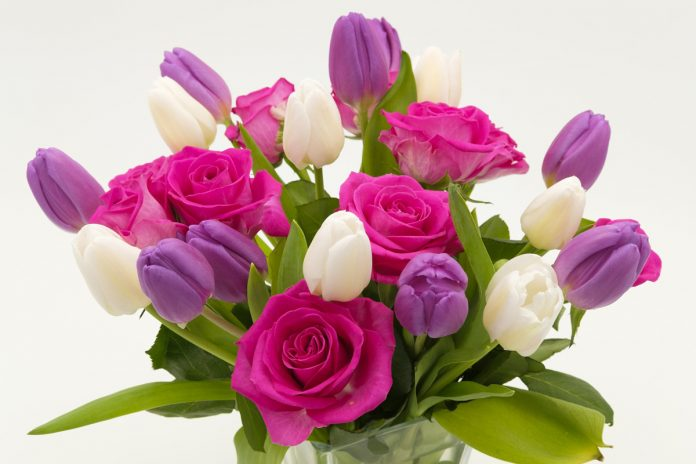 Cut Flowers - Tips and Tricks to Help Them Last Longer