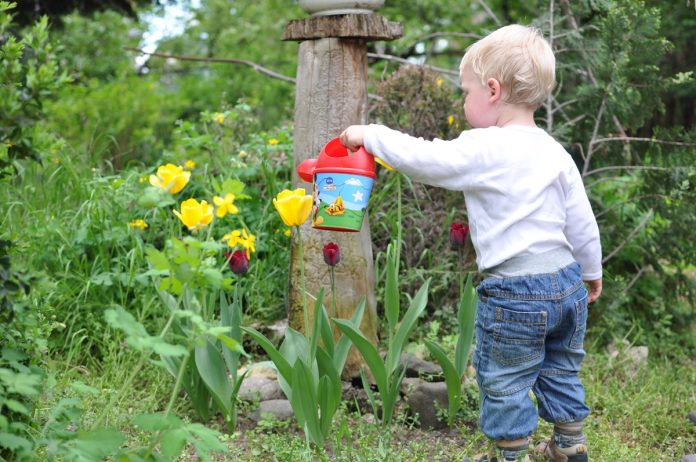 13 Nature Activities to Do with Your Toddler!