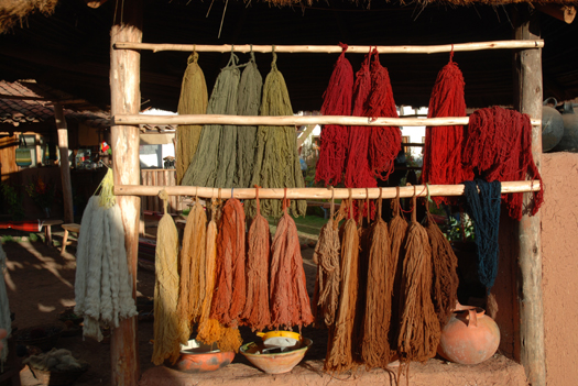 Making Natural Dyes from Plants