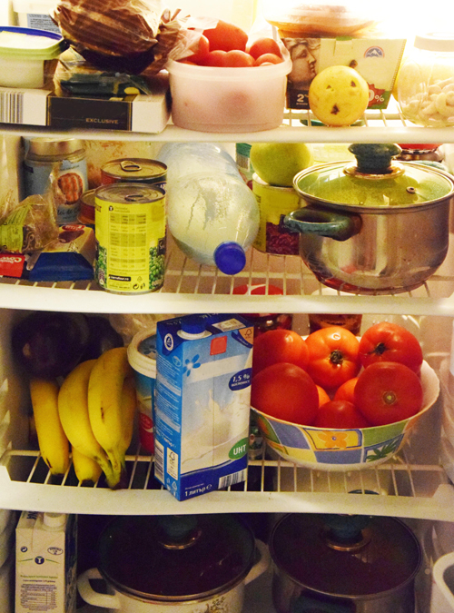 12 Smart and Cheap Ways to Organize Your Refrigerator