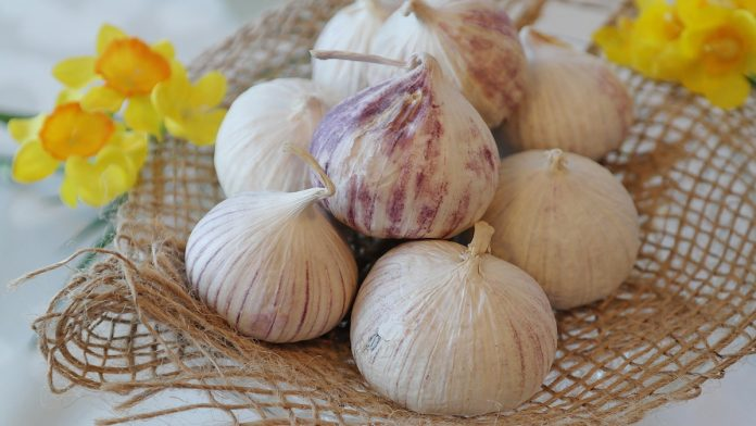 Do you Know The Health Benefits of Garlic?