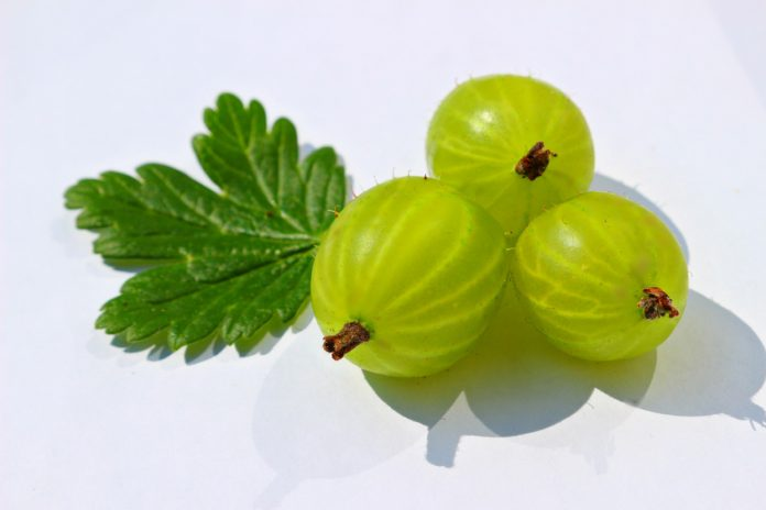 Gorgeous Hair with Gooseberries