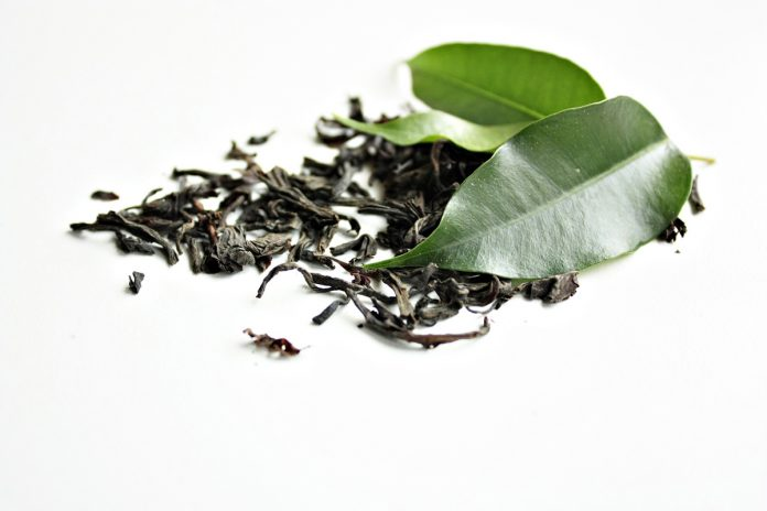 The Many Amazing Uses for Green Tea Leaves