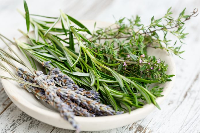 Native American Remedies for Hair Loss
