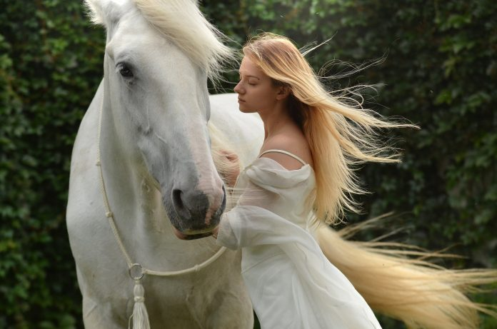 What Can a Horse Teach You About Hair?