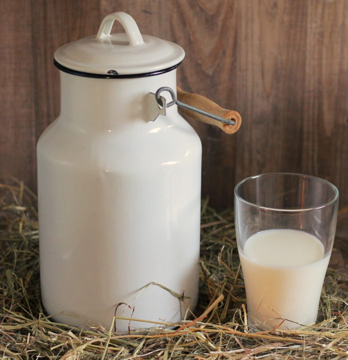 The Raw Milk Cure