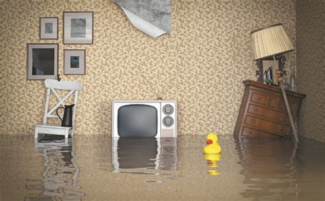 Basement Flooding: How to Avoid Standing in Knee-deep in Water