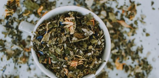 Growing Tea Herbs