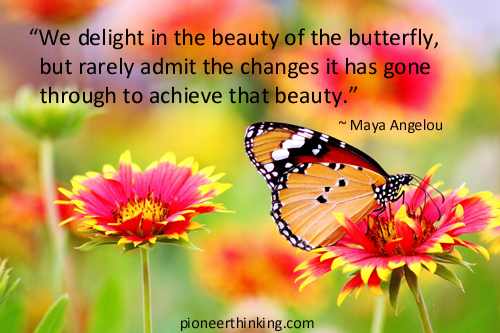 Beauty of The Butterfly - Maya Angelou