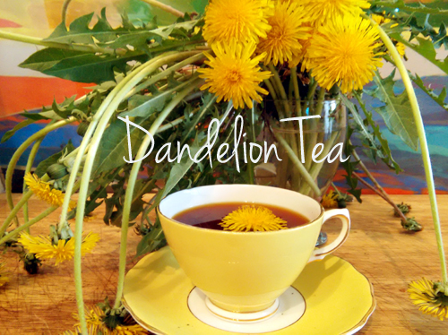 Dandelion Root Tea – Weight Loss and Cancer-Killing Drink