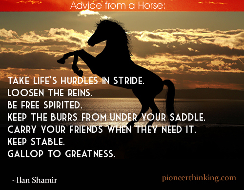 Advice from a Horse -Ilan Shamir
