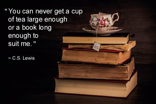 C.W. Lewis Quotes