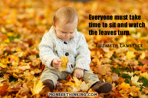 Watch The Leaves Turn - Elizabeth Lawrence
