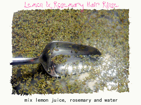 pt_lemon-rosemary-hair-rinse2a