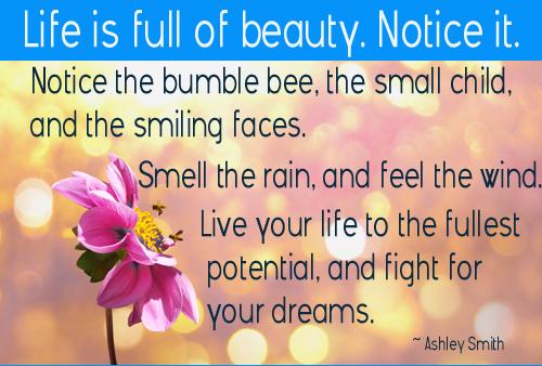 Life is Full of Beauty - Ashley Smith