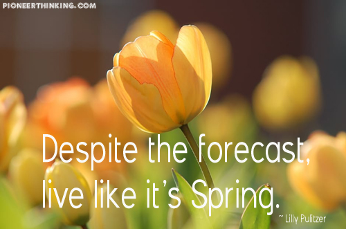 Live Like It's Spring - Lilly Pulitzer