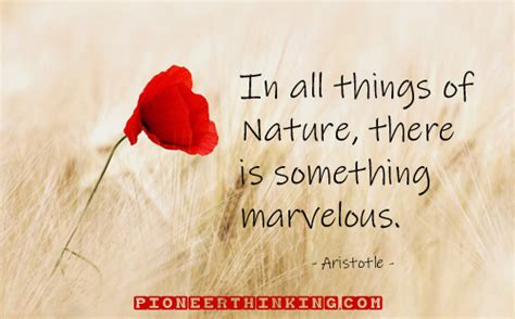 In All Things of Nature - Aristotle