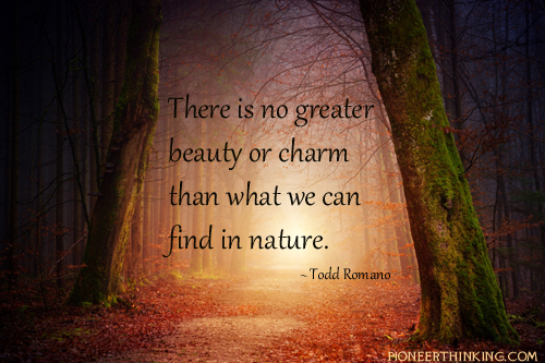 There is No Greater Beauty - Todd Romano