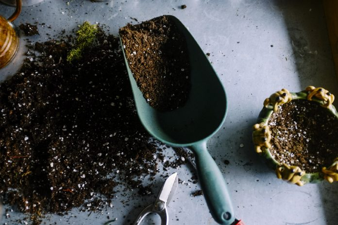 Use Your Microwave Oven to Sterilize Soil for Your Garden Plants or Houseplants