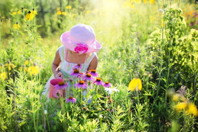 This Spring Take a Walk on The 'Wildflower' Side